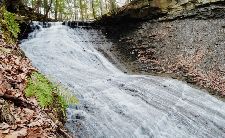 My Top 5 Favorite Cleveland Metroparks